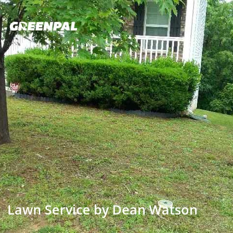 Grass Cutin Raleigh,27604,Yard Cutting by Dean's Lawn Care, work completed in Aug , 2020
