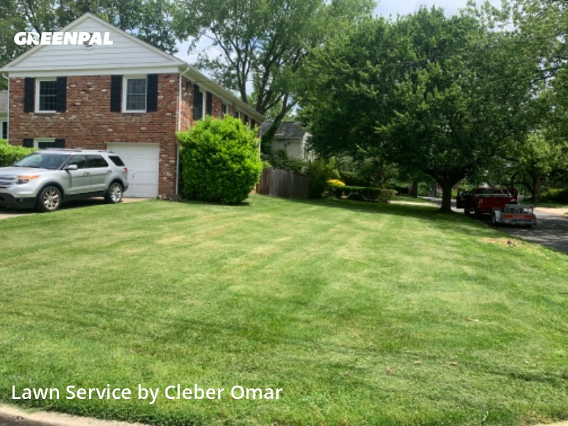 Yard Mowingin Bethesda,20816,Lawn Care by Omarfamily, work completed in Jul , 2020