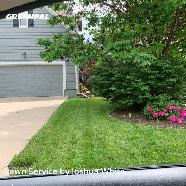 Grass Cuttingin Shawnee,66218,Lawn Mowing Service by Pinnacle Lawn, work completed in Jul , 2020