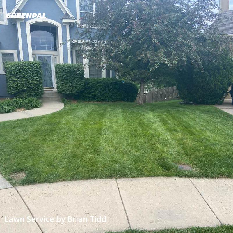 Lawn Cutin Lenexa,66220,Yard Cutting by Tidd Lawn Llc, work completed in Jul , 2020