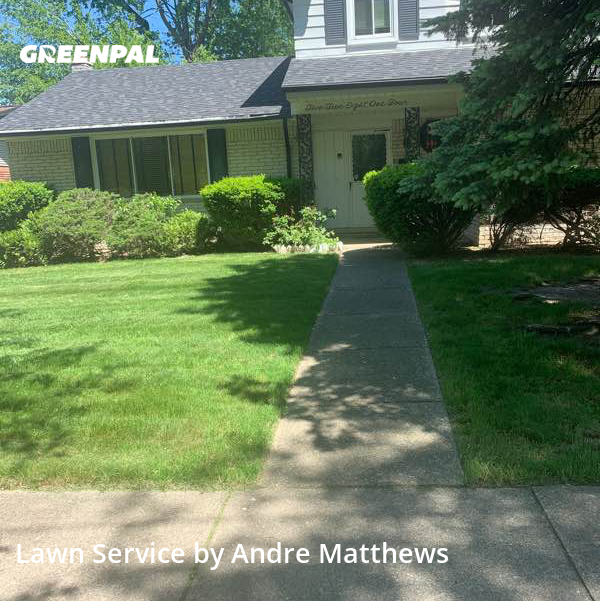 Grass Cutin Dearborn Heights,48127,Grass Cutting by Afaroe Lawncare, work completed in Jul , 2020