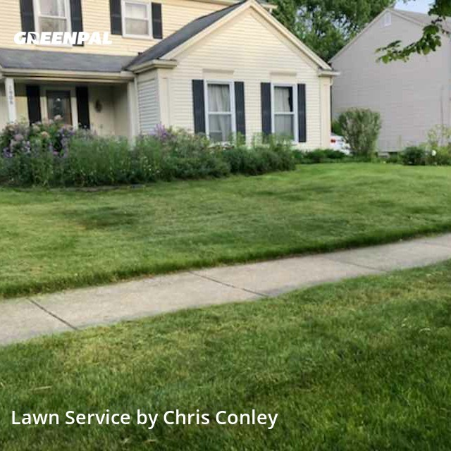 Lawn Mowing Servicein Troy,48098,Lawn Cutting by Marie Maintenance, work completed in Aug , 2020