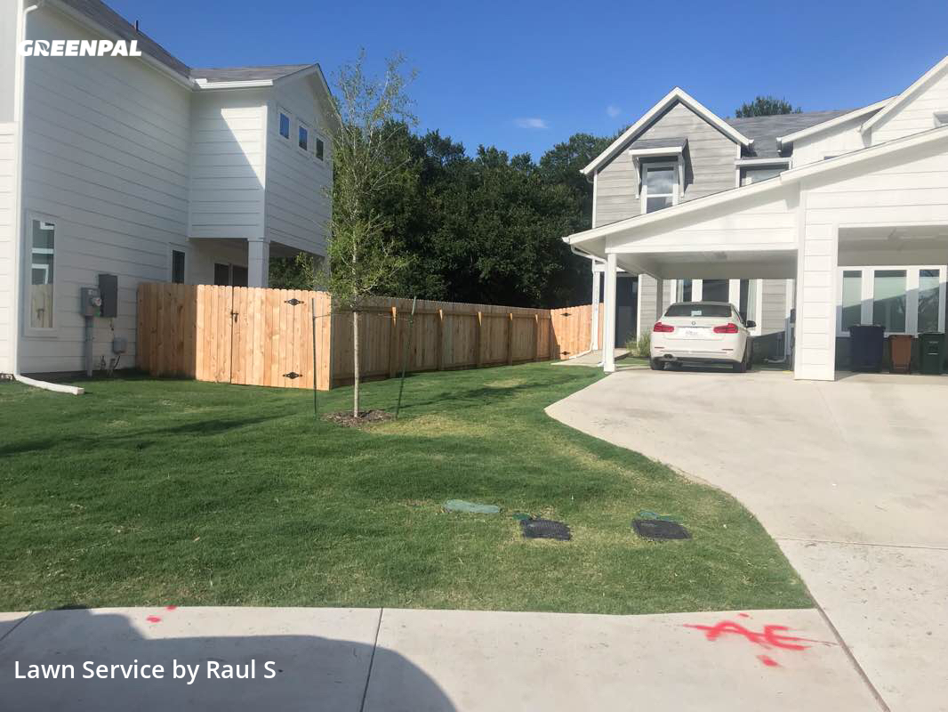 Grass Cutin Austin,78721,Grass Cut by Raul's Lawn Care And, work completed in Jul , 2020