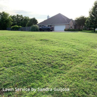 Yard Mowingin Burleson,76028,Yard Mowing by Raccoon Lawn Service, work completed in Jul , 2020