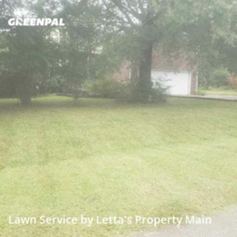 Yard Mowingin Clayton,27520,Grass Cutting by Letta's Property Main, work completed in Sep , 2020