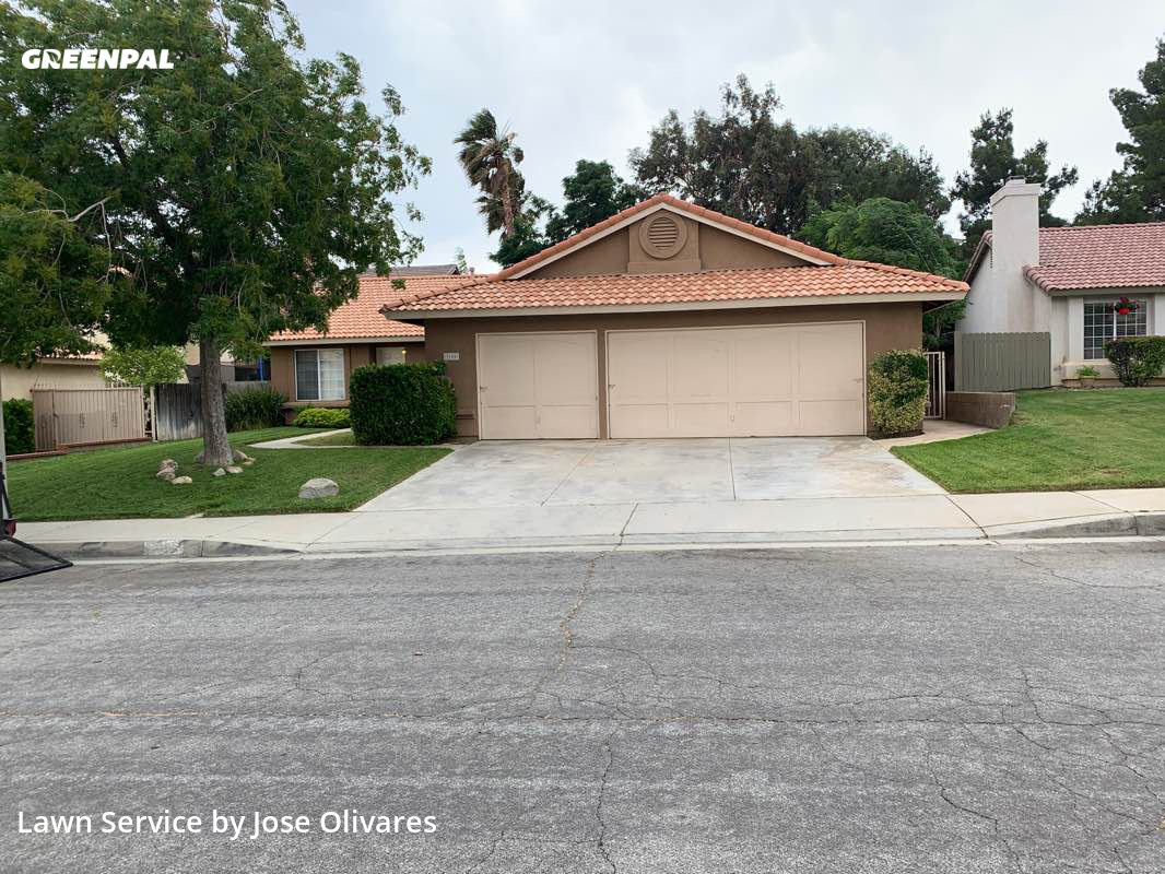Grass Cuttingin Palmdale,93551,Lawn Cutting by Olivares Gardening , work completed in Jul , 2020