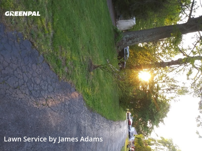 Lawn Mowingin Media,19063,Lawn Mowing Service by Garnet Valley Proper, work completed in Sep , 2020