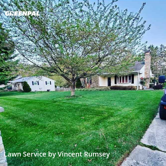 Lawn Cuttingin Towson,21286,Lawn Care Service by Precision Lawn Care , work completed in Sep , 2020
