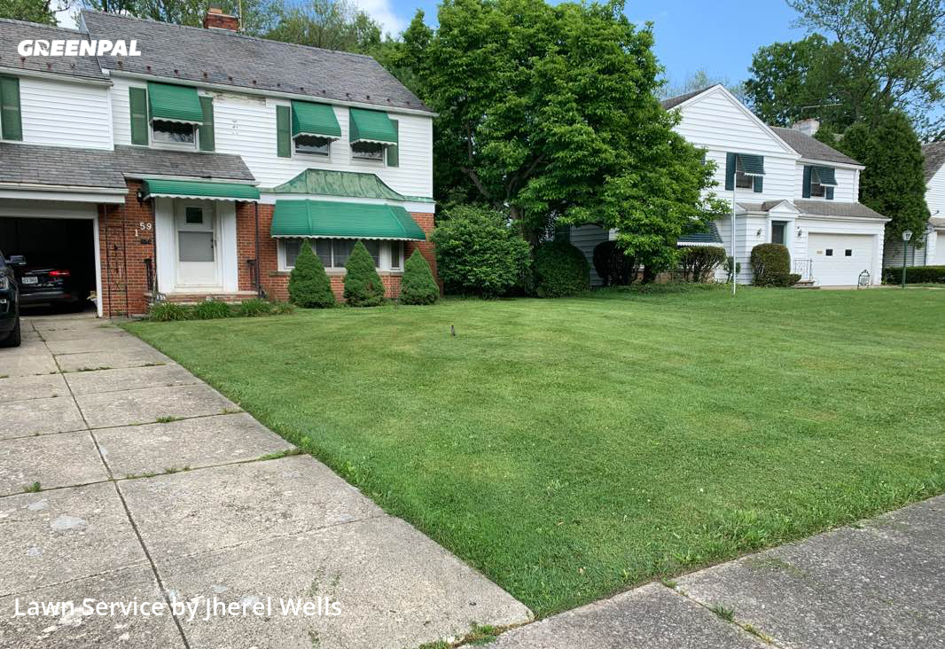Yard Cuttingin Cleveland Heights,44112,Grass Cutting by Wells & Son L.L.C., work completed in Sep , 2020