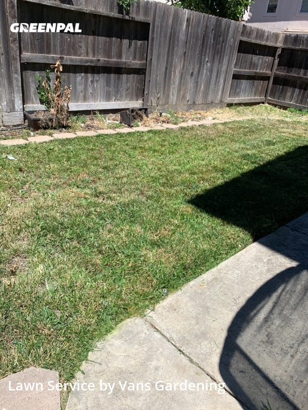Yard Mowingin Elk Grove,95758,Lawn Maintenance by Vans Gardening, work completed in Sep , 2020