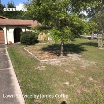 Lawn Servicein Spring Hill,34608,Lawn Cut by Just A Man And A Mow, work completed in May , 2020