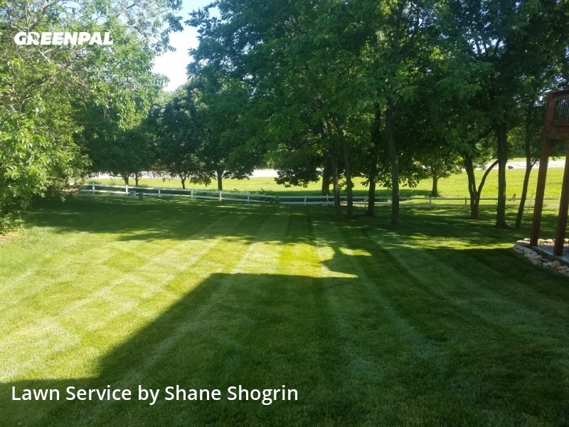 Grass Cutin Lenexa,66220,Lawn Cut by Shane Shogrin, work completed in Sep , 2020