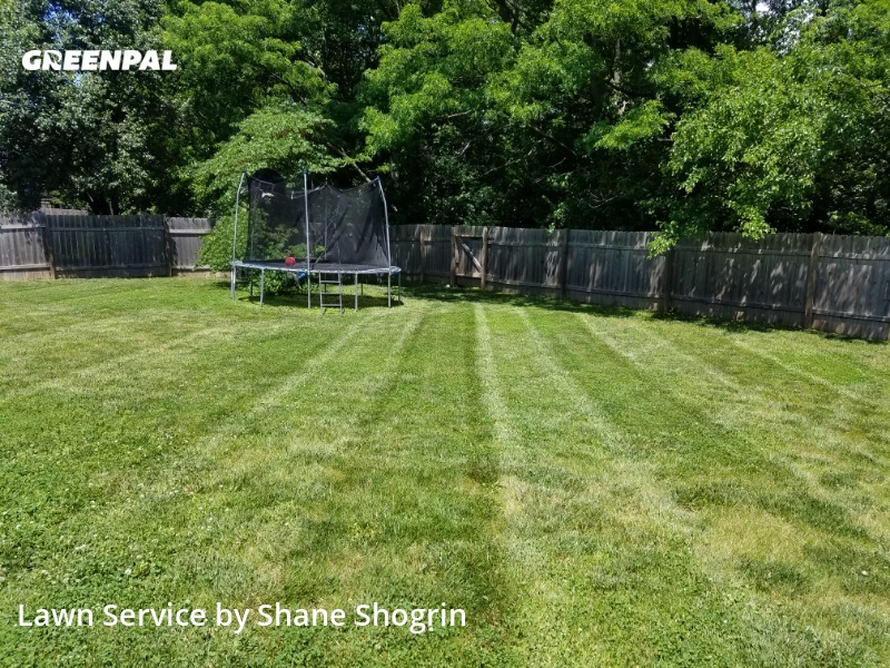 Lawn Carein Olathe,66061,Grass Cutting by Shane Shogrin, work completed in Aug , 2020