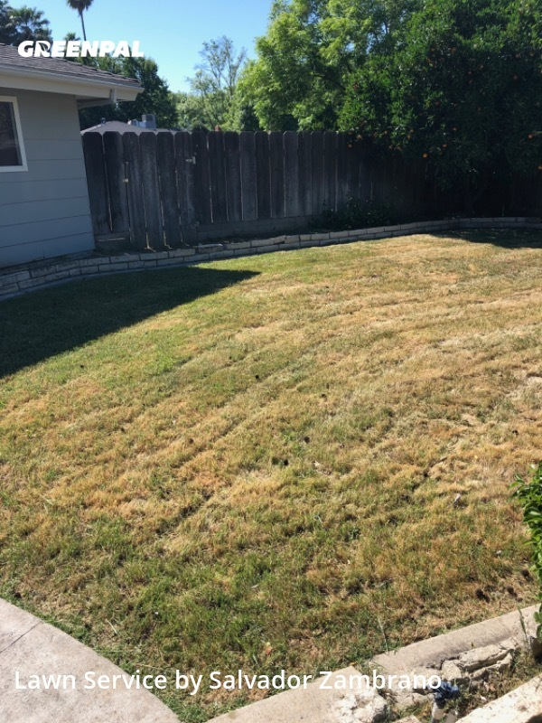 Yard Mowingin Merced,95348,Lawn Cut by Zambrano's Lawn Care, work completed in Aug , 2020