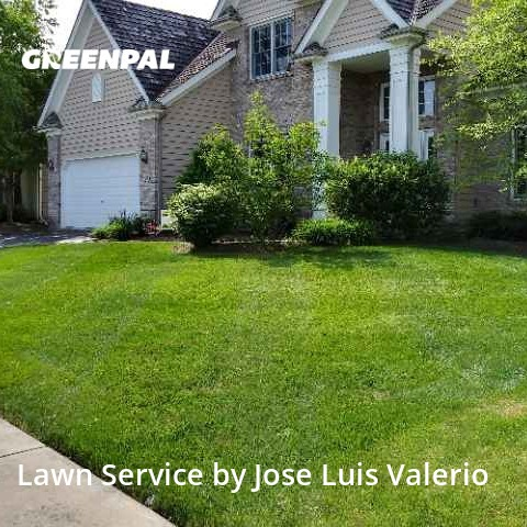 Lawn Cuttingin Aurora,60504,Yard Mowing by Valerio's Landscaping, work completed in Jul , 2020