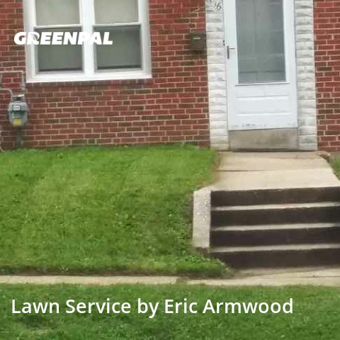 Yard Mowingin Parkville,21234,Lawn Mow by Home Grown Lawns, work completed in Aug , 2020