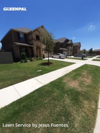 Lawn Mowing Servicein Mc Kinney,75070,Grass Cut by Cowboy Cutt Lawn Care, work completed in Sep , 2020