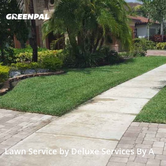 Grass Cutin Parkland,33076,Lawn Service by Deluxe Services By A, work completed in Aug , 2020