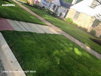 Lawn Carein Elmhurst,60126,Yard Cutting by Fatherandsonhandyman, work completed in Jul , 2020