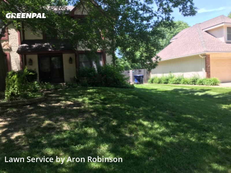 Lawn Carein Blue Springs,64015,Lawn Cutting by Aron&Sons Lawn Care , work completed in Aug , 2020