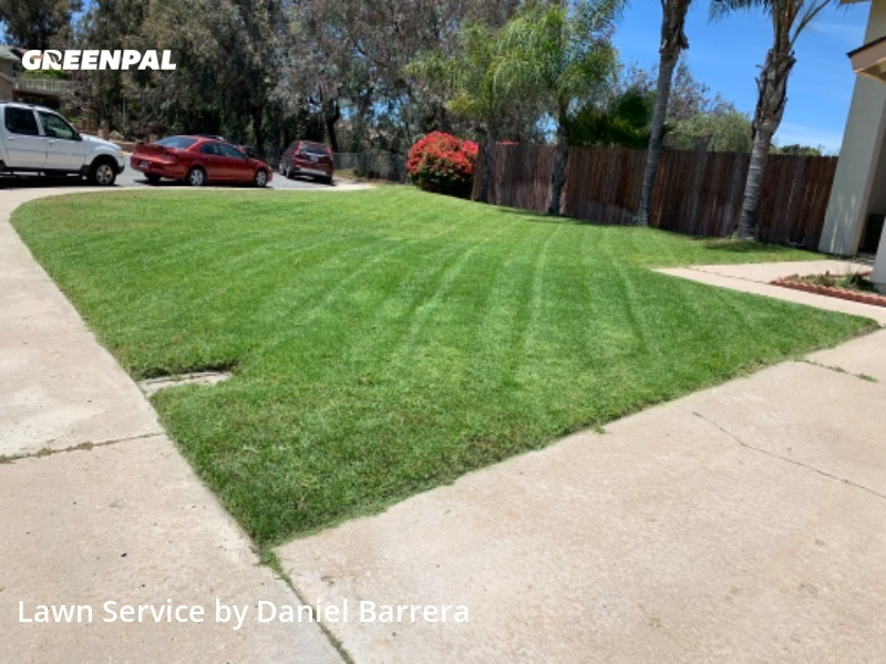 Lawn Mowin Spring Valley,91977,Lawn Mowing by South Cal Landscaping, work completed in Jul , 2020