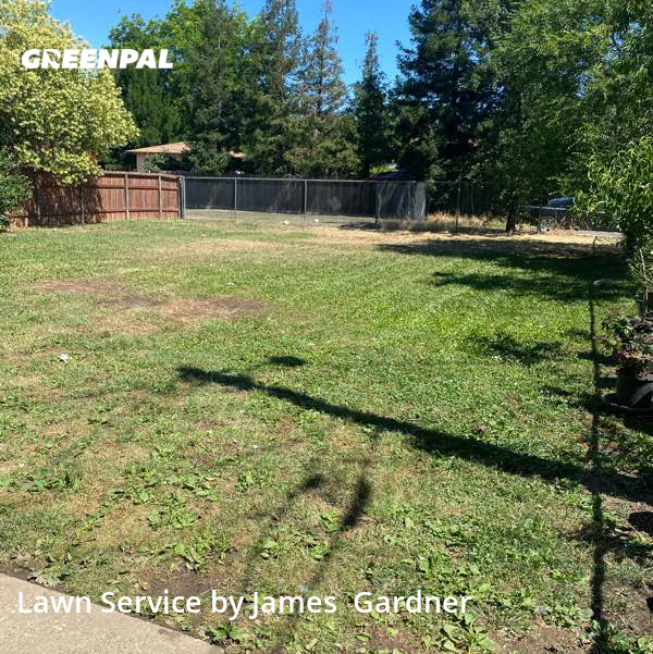 Lawn Mowing Servicein Citrus Heights,95610,Lawn Cutting by James Lawn Care, work completed in Sep , 2020