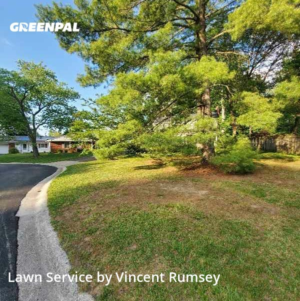 Lawn Maintenancein Bowie,20715,Lawn Mowing Service by Precision Lawn Care , work completed in Jul , 2020