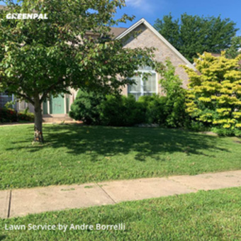 Lawn Mowing Servicein Affton,63123,Yard Mowing by Juniors Lawn Care, work completed in Jul , 2020