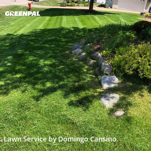 Grass Cutin Oak Creek,53154,Lawn Mowing by Tri Stars Landscaping, work completed in Aug , 2020
