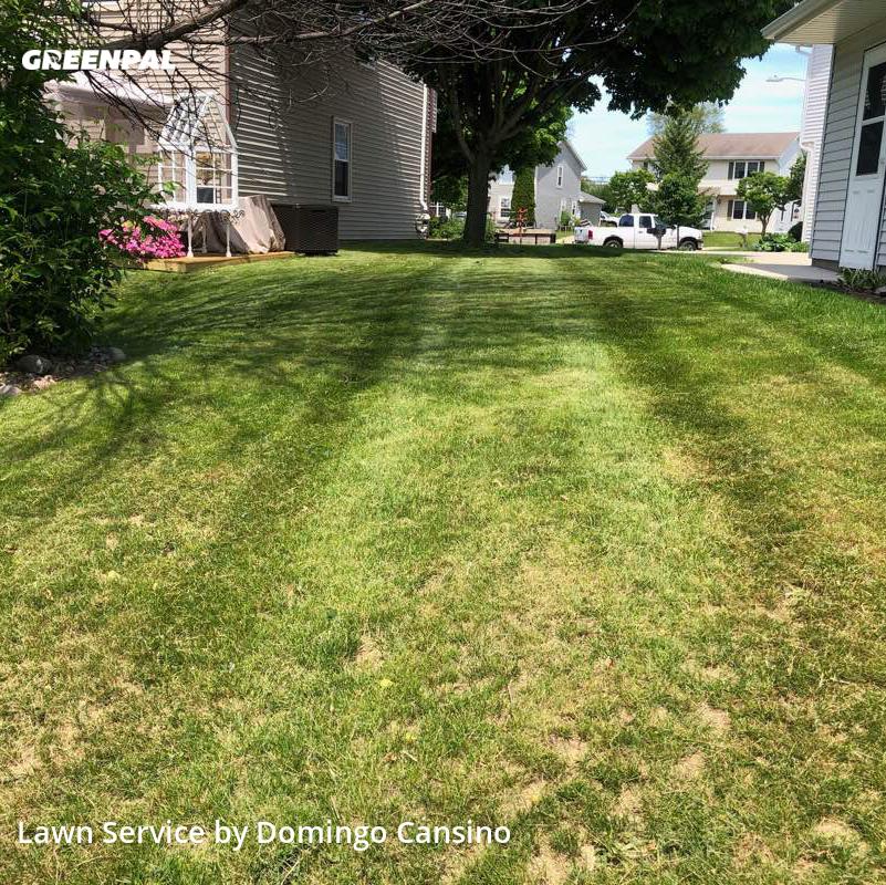 Grass Cuttingin Waukesha,53186,Lawn Service by Tri Stars Landscapin, work completed in Jul , 2020