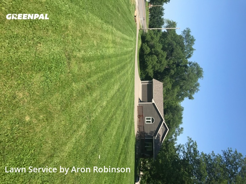Lawn Cuttingin Kansas City,64117,Lawn Service by Aron&Sons Lawn Care , work completed in Jul , 2020