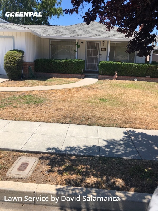 Lawn Mowingin Sunnyvale,94086,Lawn Cutting by E&D Gardening, work completed in Jul , 2020