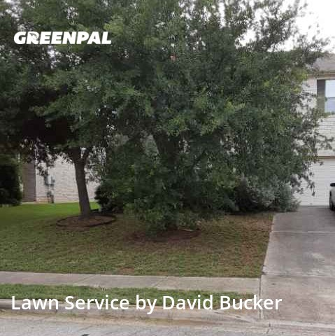 Yard Mowingin Leander,78641,Lawn Care by Dabago Services, work completed in Jul , 2020