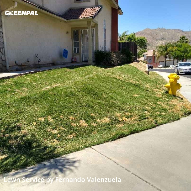Grass Cutin Moreno Valley,92557,Lawn Mow by Cold Springs Lawn , work completed in Sep , 2020