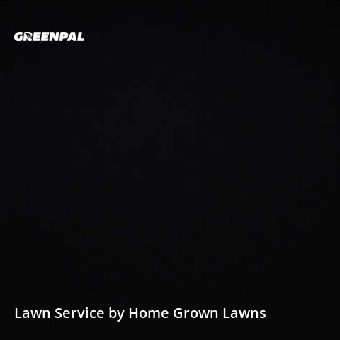 Lawn Servicein Parkville,21234,Lawn Maintenance by Home Grown Lawns, work completed in Aug , 2020