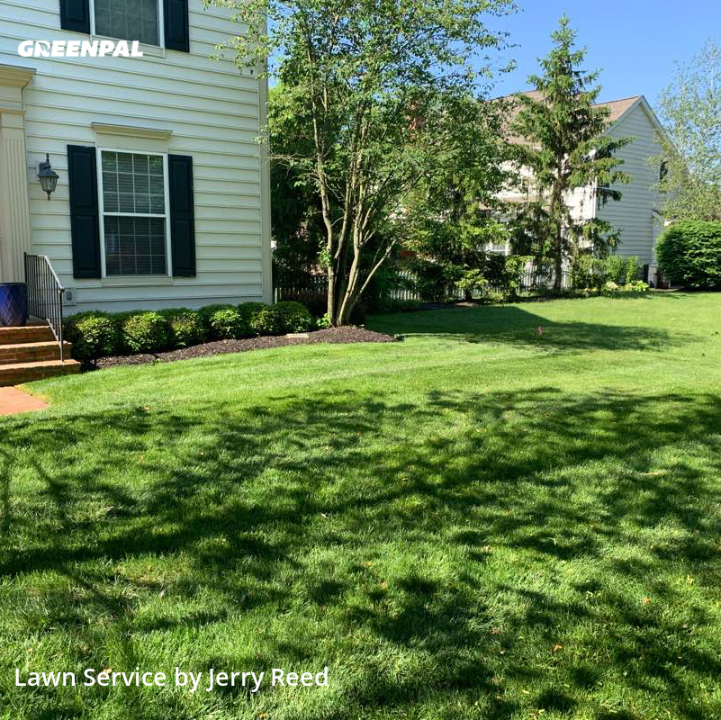 Lawn Mowin New Albany,43054,Lawn Cut by Yard Goat Lawns Llc, work completed in Jul , 2020