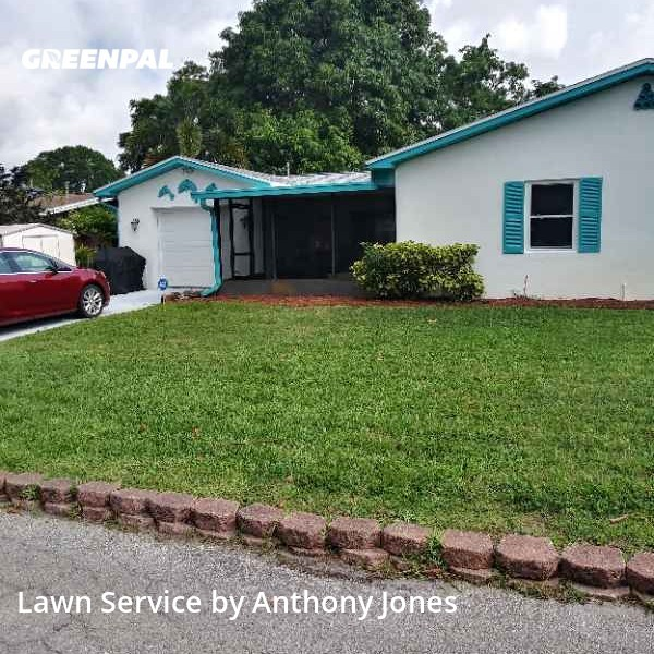 Lawn Servicein Gulfport,33707,Grass Cutting by Grass Sargent, work completed in Oct , 2020