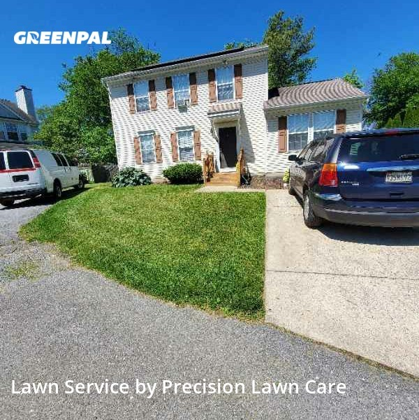 Grass Cuttingin Owings Mills,21117,Yard Cutting by Precision Lawn Care , work completed in Jul , 2020
