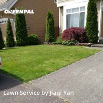 Lawn Care Servicein Kent,98042,Lawn Service by Small Guy Lawn Mowing, work completed in May , 2020