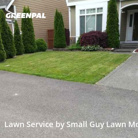 Lawn Carein Kent,98042,Lawn Maintenance by Small Guy Lawn Mowing, work completed in Aug , 2020