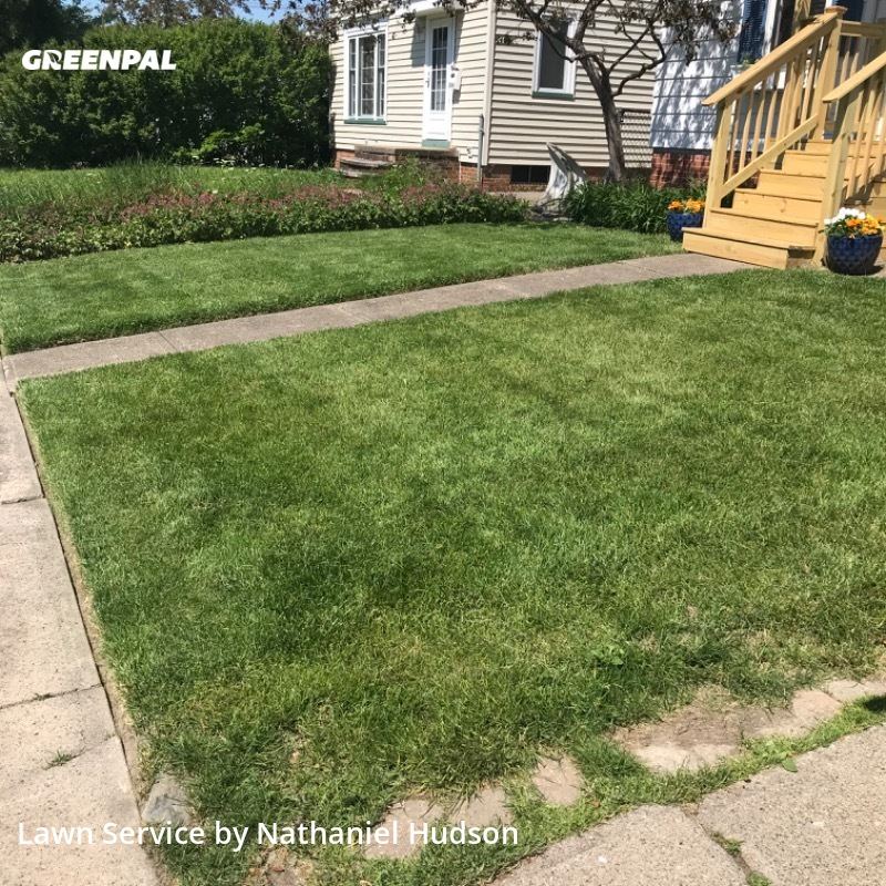 Lawn Cuttingin Lakewood,44107,Yard Cutting by Green Bear Lawn Care, work completed in Sep , 2020