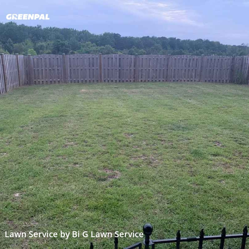 Lawn Care Servicein Columbia,29209,Lawn Mowing Service by Bi G Lawn Service, work completed in Sep , 2020