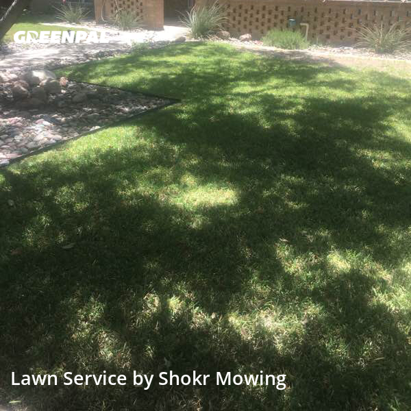Grass Cuttingin Midland,79705,Lawn Cut by Shokr Mowing, work completed in Jul , 2020