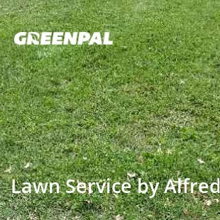 Lawn Mowing Servicein Independence,64055,Lawn Mowing Service by Katamura Mowing, work completed in Aug , 2020
