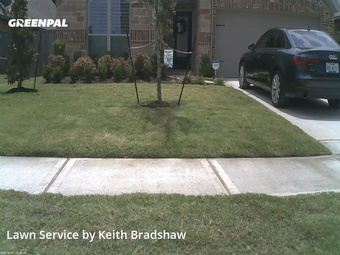 Lawn Carein Tomball,77375,Yard Cutting by Clean Lawn Services, work completed in Jul , 2020