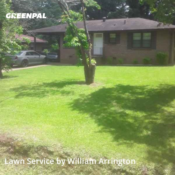 Yard Mowingin Bessemer,35023,Lawn Cut by A Team Lawn Care, work completed in Aug , 2020