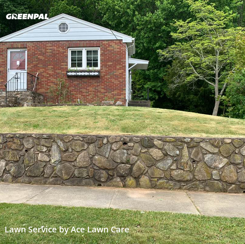 Yard Mowingin New Haven,6512,Grass Cut by Ace Lawn Care, work completed in Aug , 2020