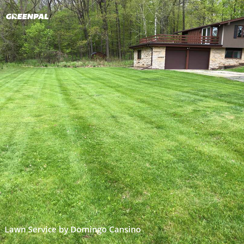 Lawn Mowin Brookfield,53005,Lawn Cutting by Tri Stars Landscaping, work completed in Aug , 2020