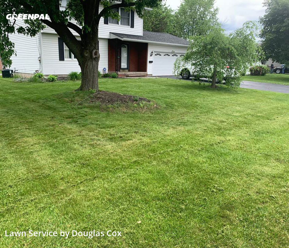 Grass Cutting nearby Liverpool, NY, 13088