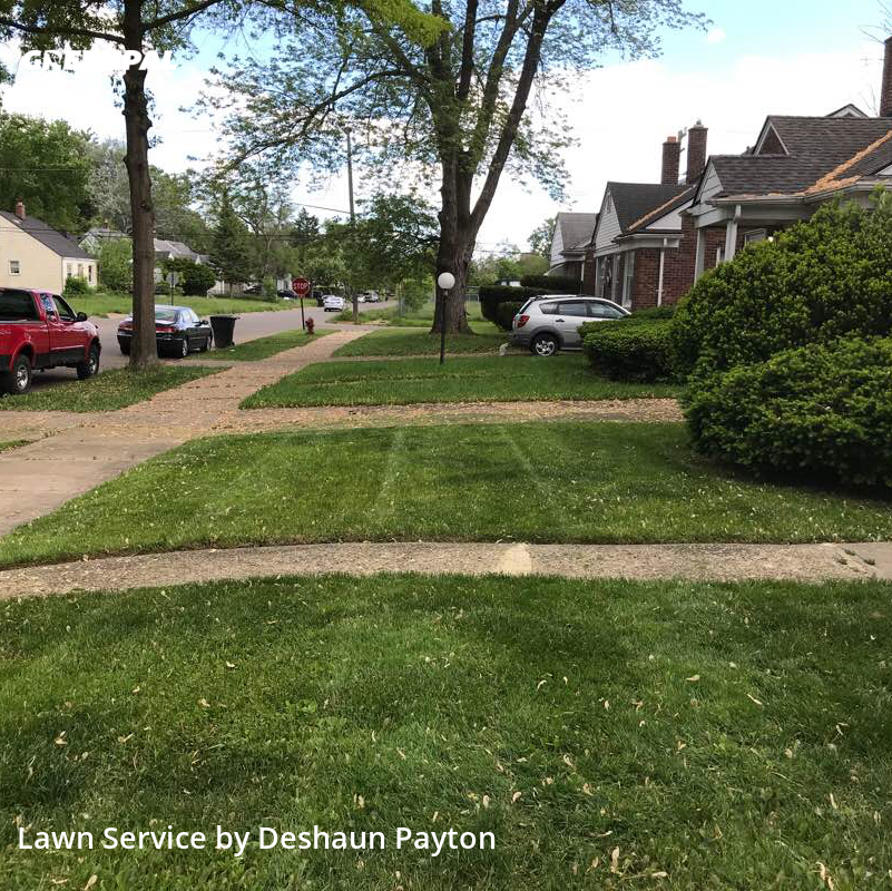 Lawn Care Servicein Detroit,48228,Yard Cutting by Paytonlawncareandsno, work completed in Aug , 2020
